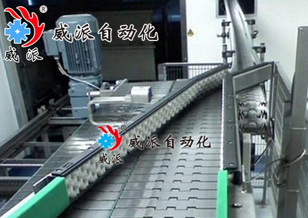 链板输送机2